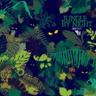 Thumb_325_jungle_by_night
